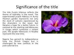 purple hibiscus essay purple hibiscus postcolonial legacy essay questions purple hibiscus sparknotes essay for you essay questions purple hibiscus sparknotes image