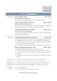 Download Fake Resume Generator Ajrhinestonejewelry Com