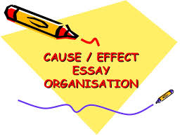 cause effect essay powerpoint new cause effect essayorganisation
