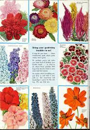 file currie s garden annual 1939 1939 20792229846 jpg