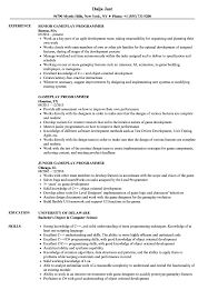 Resume For Web Developer Resume Computerammer Resume Template Pdf Free Format Fill