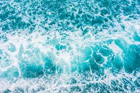 Ocean Vectors Photos And Psd Files Free Download