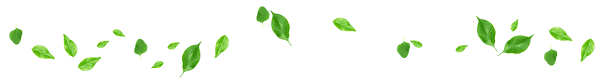 Resultado de imagen de linea separadora flores