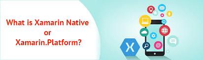 What Is Xamarin How To Choose Between Xamarin Forms And Xamarin Native Matrid
