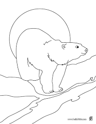 Small Picture Polar bear printable coloring pages Hellokidscom