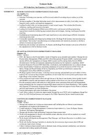 Continuous Improvement Manager Resume Samples Velvet Jobs