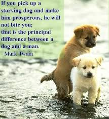 Dog Quotes Love Simple Download Dog Love Quotes Ryancowan Quotes