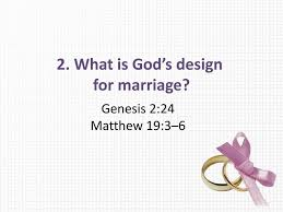 Why Did God Design Marriage Session 6 Is Marriage Still Relevant Ppt Download