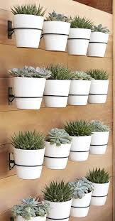 wall mounted planters create a whole succulent garden attaching planters to  the wall wall mount plant