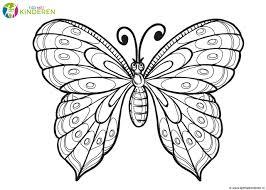 Kleurplaat Vlinders Archidev Nieuwe Kleurplaat Vlinder Peuters20