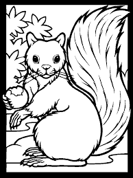 Small Picture Color Squirrel Animals Coloring Pages Coloring Book