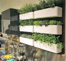 brilliant diy indoor herb garden ideas