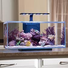 jbj rimless desktop aquarium