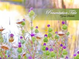 Flower Powerpoint Free Wild Flowers Powerpoint Template Download Free