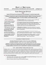 Resume Service Mesmerizing Atlanta Resume Service Free Templates New Coo Resume Best Resume