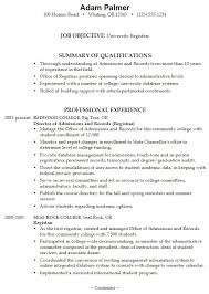Great Examples Of Resumes   Resume Examples And Free Resume Builder