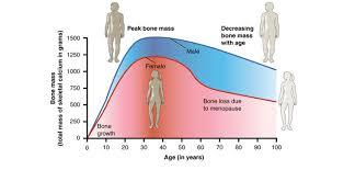 Bone Mass Chart Study Links Osteoporosis To Heart Failure Orthopedics This