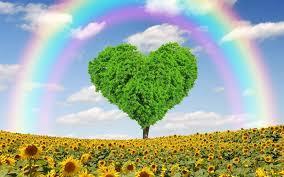 Scarica sfondi ambientale concetti, arcobaleno, girasoli, primavera,  albero, cuore, amore per il pianeta per desktop libero. Immagini sfondo del  desktop libero