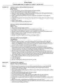 Human Capital Management Resume Samples Velvet Jobs