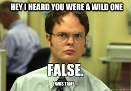 HEY I HEARD YOU WERE A WILD ONE False. I was tame. - Schrute ... via Relatably.com