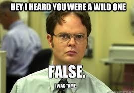 HEY I HEARD YOU WERE A WILD ONE False. I was tame. - Schrute ... via Relatably.com