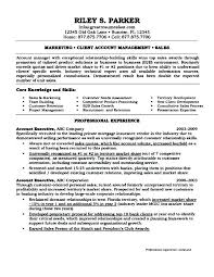 Executive Director Resume Resume Template Ideas Executive Director ...