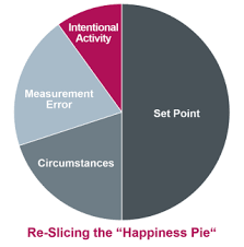 Re Slicing The Happiness Pie How Much Of Our Well Being Can