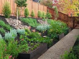 Backyard Landscape Design Collection