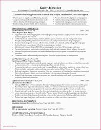 Gis Analyst Resume Sample 10 Lighting Technician Resume Proposal Resume