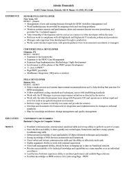 Certified Developer Resume Pega Developer Resume Samples Velvet Jobs