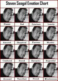Steven Seagal Emotion Chart Poster Steven Seagal Emotion Chart Puns And Funnies Funny