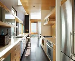 Modern Galley Kitchen Design