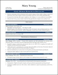 Sample Human Resources Resume Entry Level Gallery Creawizard Com