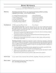Babysitter Resume Sample Resume Example