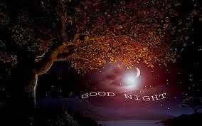 Free Download Good Night Hd Wallpapers Good Night Wallpaper