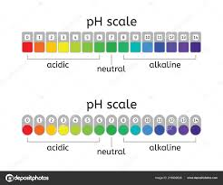 Ph Scale Color Chart Yellow Litmus Paper Color Chart Vector Scale Acidic