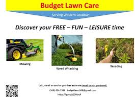 Budget Lawn Care Budget Lawn Care