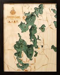 Arbutus Lake Mi Wood Chart The Mitten Map Depth Chart
