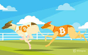 Bitcoin Cash Vs Bitcoin Price Chart Bitcoin Cash Vs Bitcoin Understanding The Difference