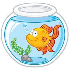 fish bowl clipart. Modren Clipart Vector Illustration Of Goldfish In A Bowl Illustration Intended Fish Bowl Clipart 123RFcom