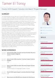 Technical Consultant Resume Samples Templates Visualcv