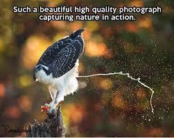FunniestMemes.com - Funniest Memes - [Such A Beautiful High ... via Relatably.com