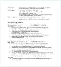 Retail Sales Associate Resume Resume Writing Service