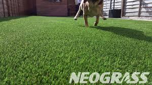 artificial grass for pets. Artificial Grass For Pets