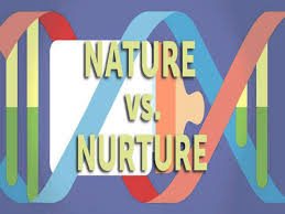nurture essay who you messing essay essay about nature and nurture  nature vs nurture essay nature vs nurture essay
