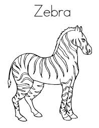 Small Picture Strong Zebra Coloring Page Download Print Online Coloring