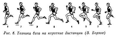 бега на короткие дистанции Техника бега на короткие дистанции