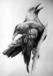 Crows Tattoos Page 2 ворон тату ворон тату эскиз птицы и ворон