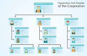 Organization Chart Psd Template Organizational Chart Template Of The Stock Vectors And