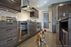 cabinet hardware san diego. Transforming San Diego Kitchen With Top Knobs Cabinet Hardware Decor Throughout